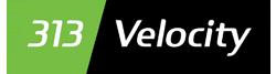 313 Velocity